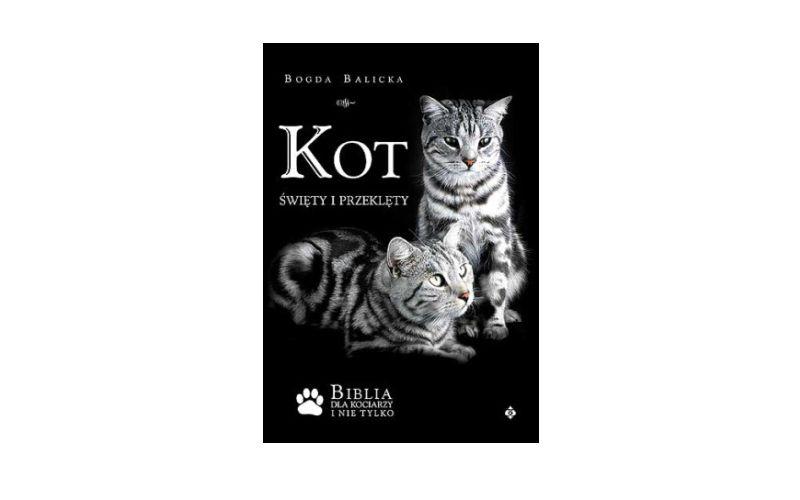 """""""Kot: Święty i Przeklęty"""" – Bogda Balicka"""