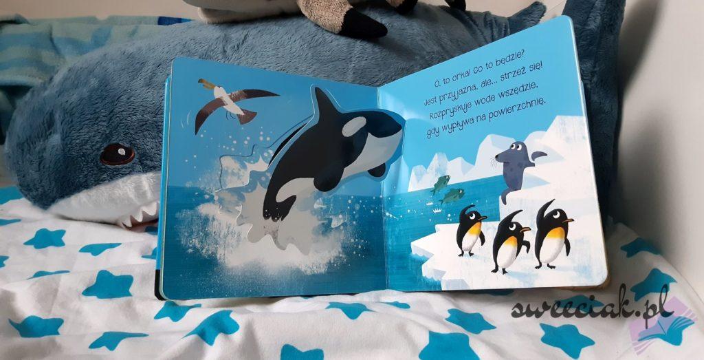 """""""Wesoły rekin i przyjaciele"""" - Gareth Lucas"""