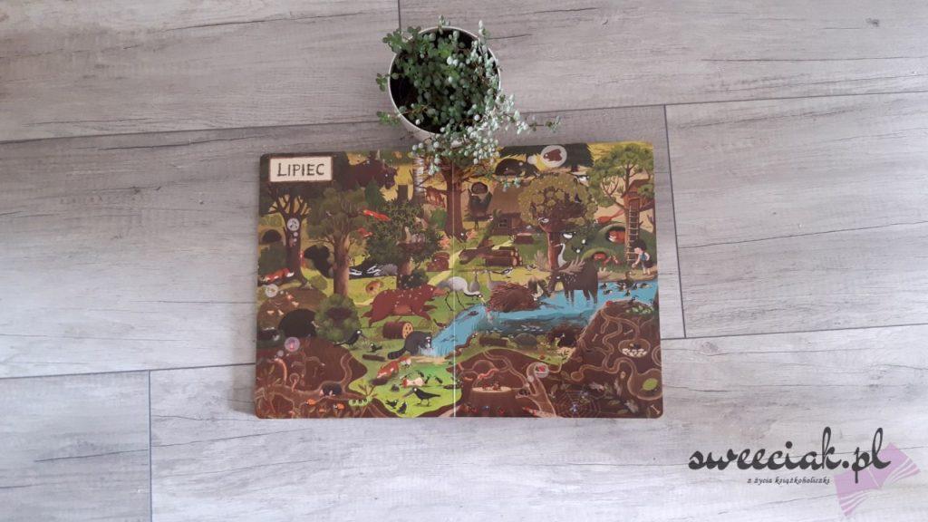 """""""Rok w lesie"""" - Emilia Dziubak"""