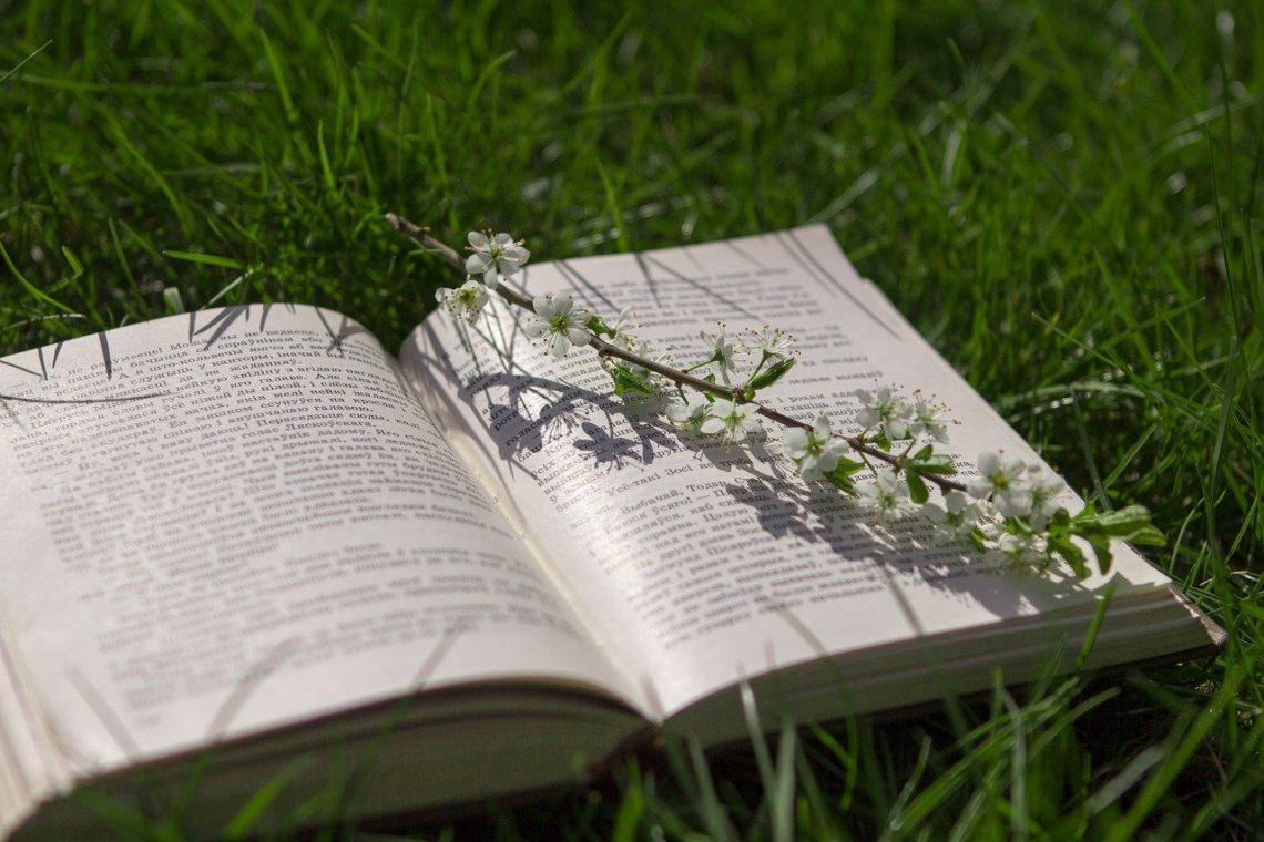 Majówka z książką 2021, źródło: pixaby.com